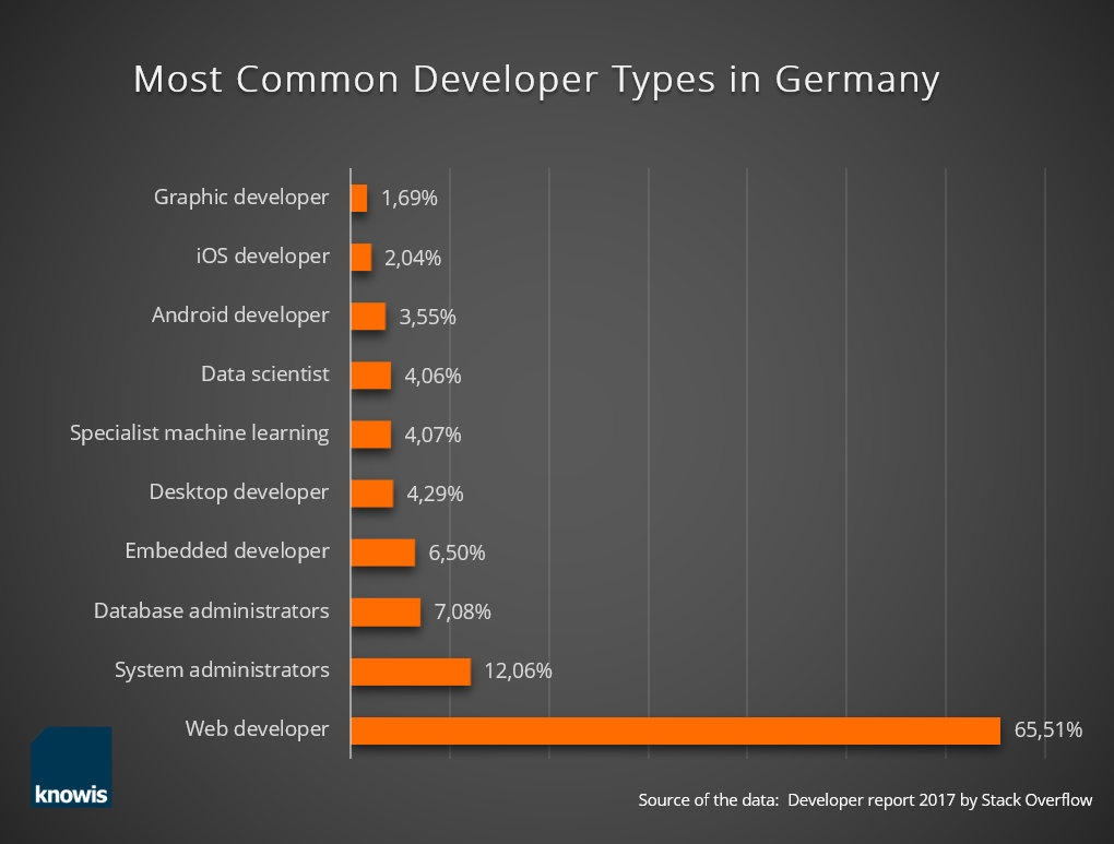 Developer-Types Info grafic