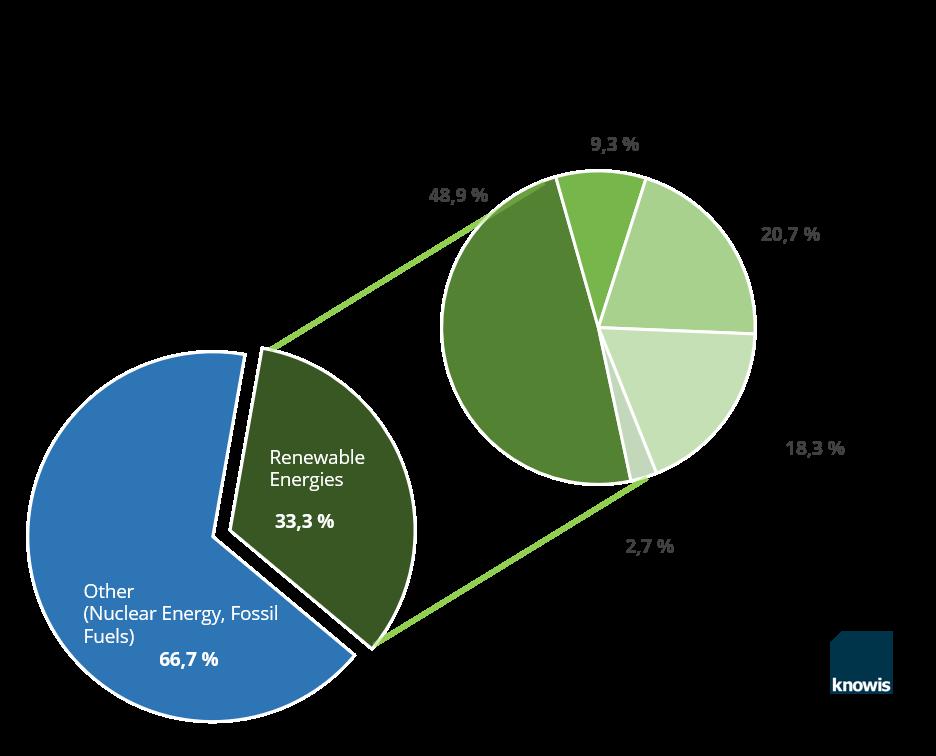 Gross electricity production renewable energy 2017